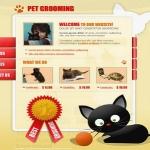 animals-and-pets5.jpg