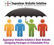 Website Design Packages Website Design in Kolkata