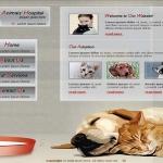 animals-and-pets7.jpg
